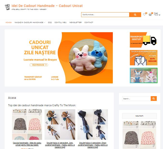 Web Design Brasov - realizare magazin online